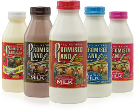 Promised Land Dairy